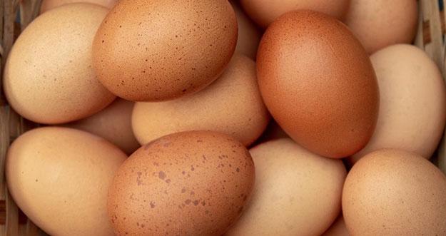 8 Cara Memilih Telur Yang Bagus dan Berkualitas