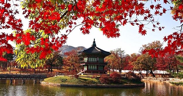5 Tempat Wisata Musim Gugur Paling Bagus di Korea Selatan