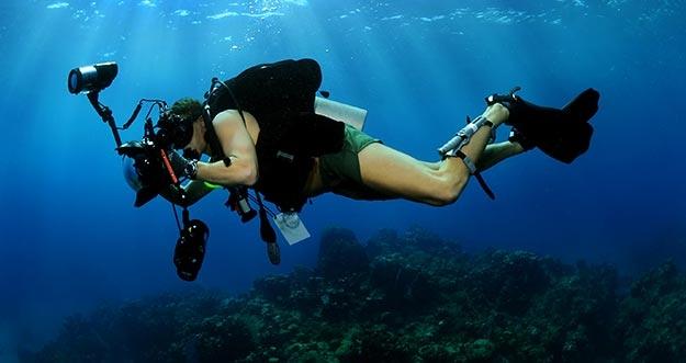 Trik Mengambil Foto Underwater Yang Keren