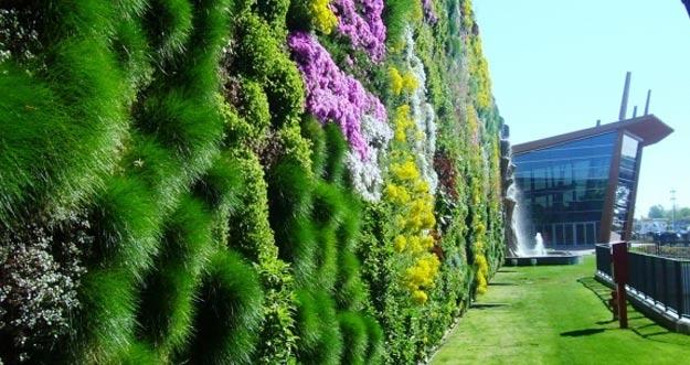 Uniknya Taman Vertikal Di Italia
