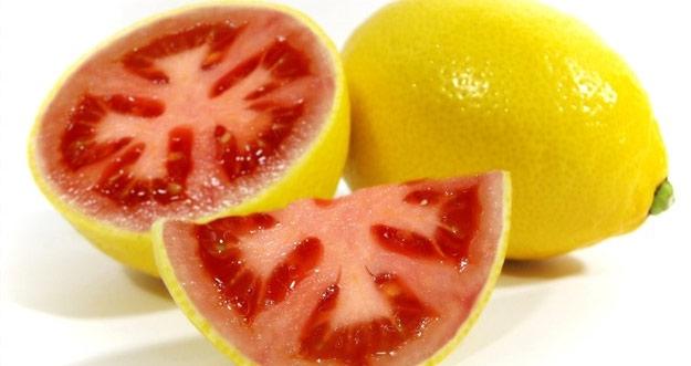Inilah Lemato, Perpaduan Tomat dengan Lemon