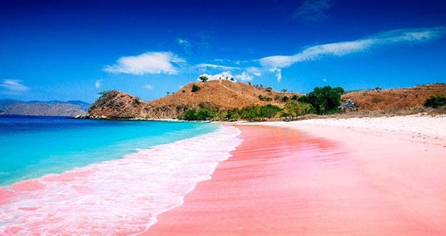Pantai Pink Yang Ada Di Indonesia