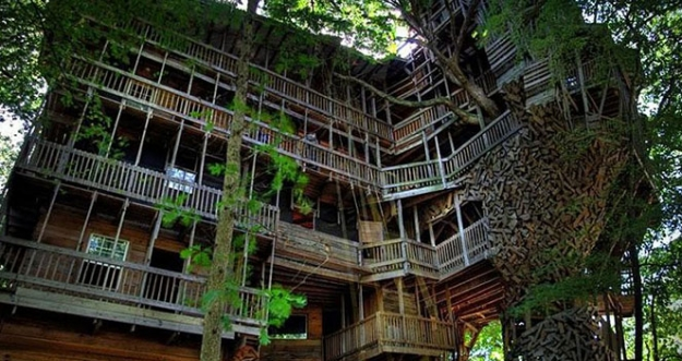 Tertarikah Kalian Menginap Di 10 Rumah Pohon Mengagumkan Ini?