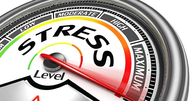 Terapkan Pola Pikir Berikut Jika Tidak Mau Stress