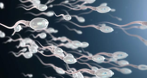 Aktivitas Yang Bisa Menurunkan Kualitas Sperma