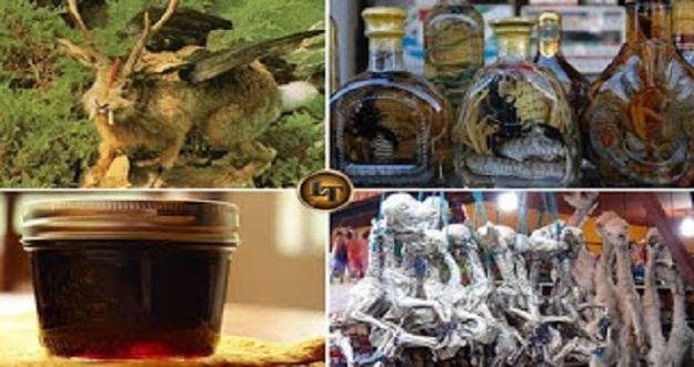 5 Souvenir Teraneh Dari Berbagai Belahan Dunia