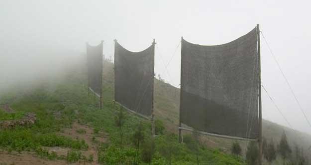 Cara Orang Peru Panen Air Dari Kabut