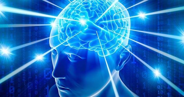 7 Fakta Tentang Otak Yang Banyak Orang Belum Tahu