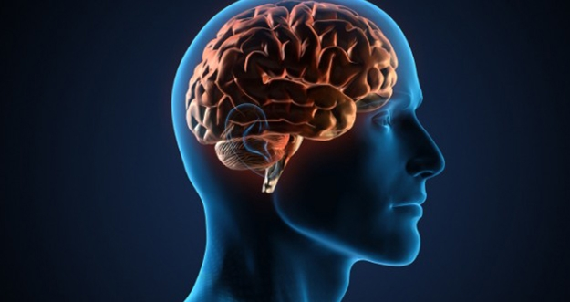 Kebiasaan Sederhana Yang Bisa Meningkatkan Fungsi Otak