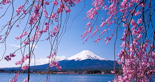 5 Tips Hemat Liburan Ke Jepang