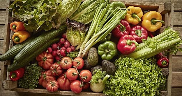Benarkah Makanan Organik Lebih Sehat dan Aman Dikonsumsi?