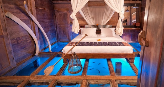 Tidur Sembari Menimati Pemandangan Kawanan Udang di Bali