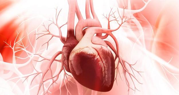5 Tips Menjaga Kesehatan Jantung