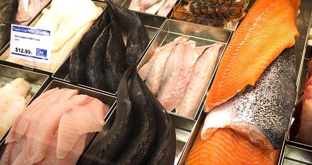 Cara Menyimpan Ikan Agar Bisa Tahan Lama