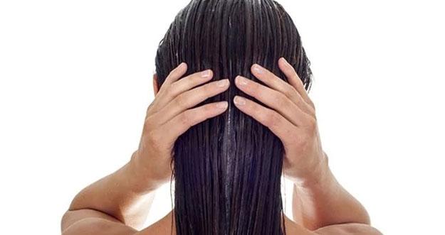 3 Bahan Alami Penumbuh Rambut