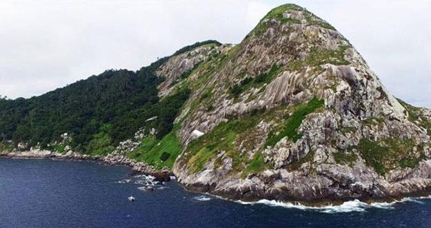 Ilha da Queimada Grande, Pulau Paling Berbahaya Di Bumi