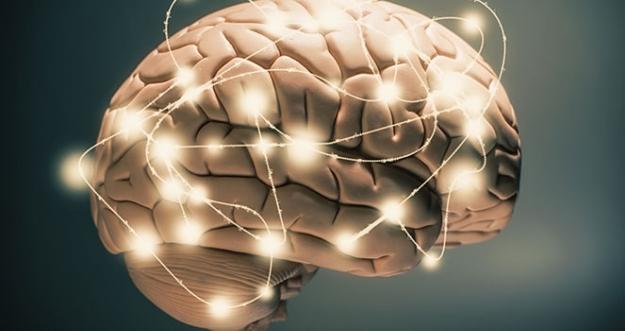 10 Cara Meningkatkan IQ