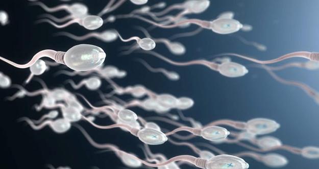 5 Tips Menjaga Kesuburan Sperma