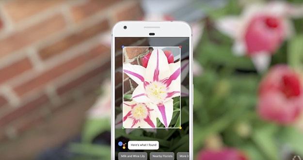 Apa Kemampuan Yang Dimiliki Kamera Google Lens?